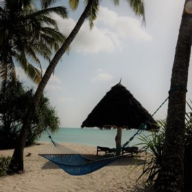 ... with loungers and hammocks to relax in dotted under palm trees...