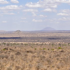 Covering 2,600km² it's located in the undulating south-eastern Maasai Steppe.