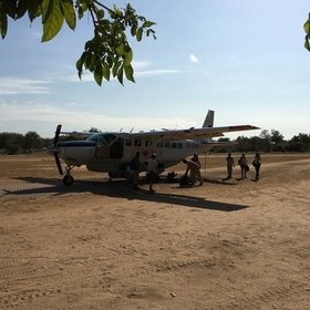 The Selous is reached by small light aircraft and you will land in the middle of the bush.