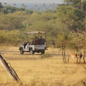 Game drives in the huge Selous Game Reserve are usually in open-sided vehicles…