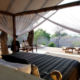 …and wake up to wonderful views over the surrounding bush...