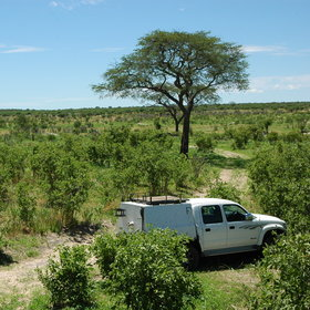 Bushmanland consists mainly of Kalahari bush.  There are few hills and driving is all on sand.