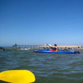 Kayak Walvis Bay.