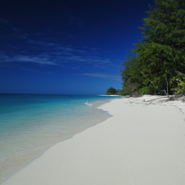 Seychelles Beach: Beach Holidays In Seychelles: 1400 Pictures