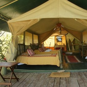 Accommodation at camps and lodges ranges from the comfortable (Porini Lion Camp)…