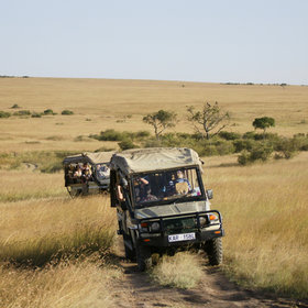 Transport is usually in purpose-built, 4x4 safari vehicles, often with open backs…