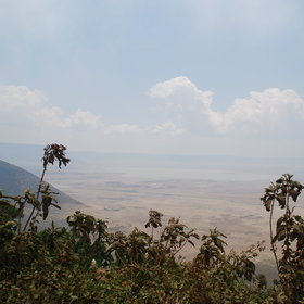 Safari in Ngorongoro Crater