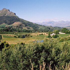 Winelands Private Tour