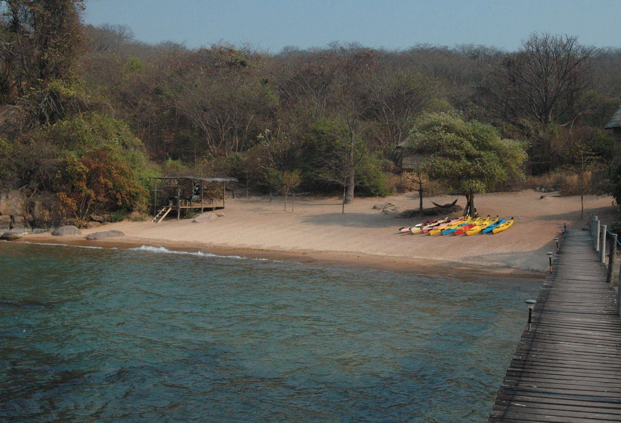 The Blue neon cichlid add-on including Mumbo Island near Cape Maclear on the southern lakeshore of Lake Malawi.