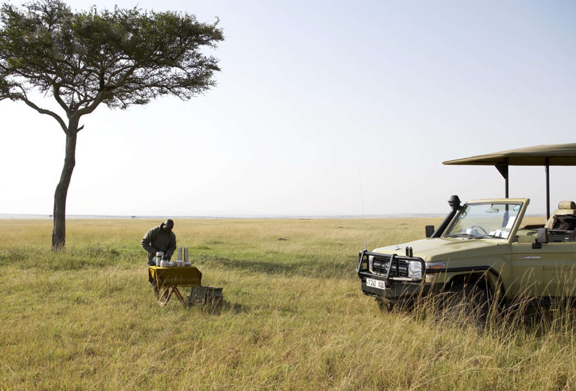 Flufftail private guided safari with 4WD to northern Tanzania including Lake Manyara National Park, The Ngorongoro Crater and the Serengeti National Park.