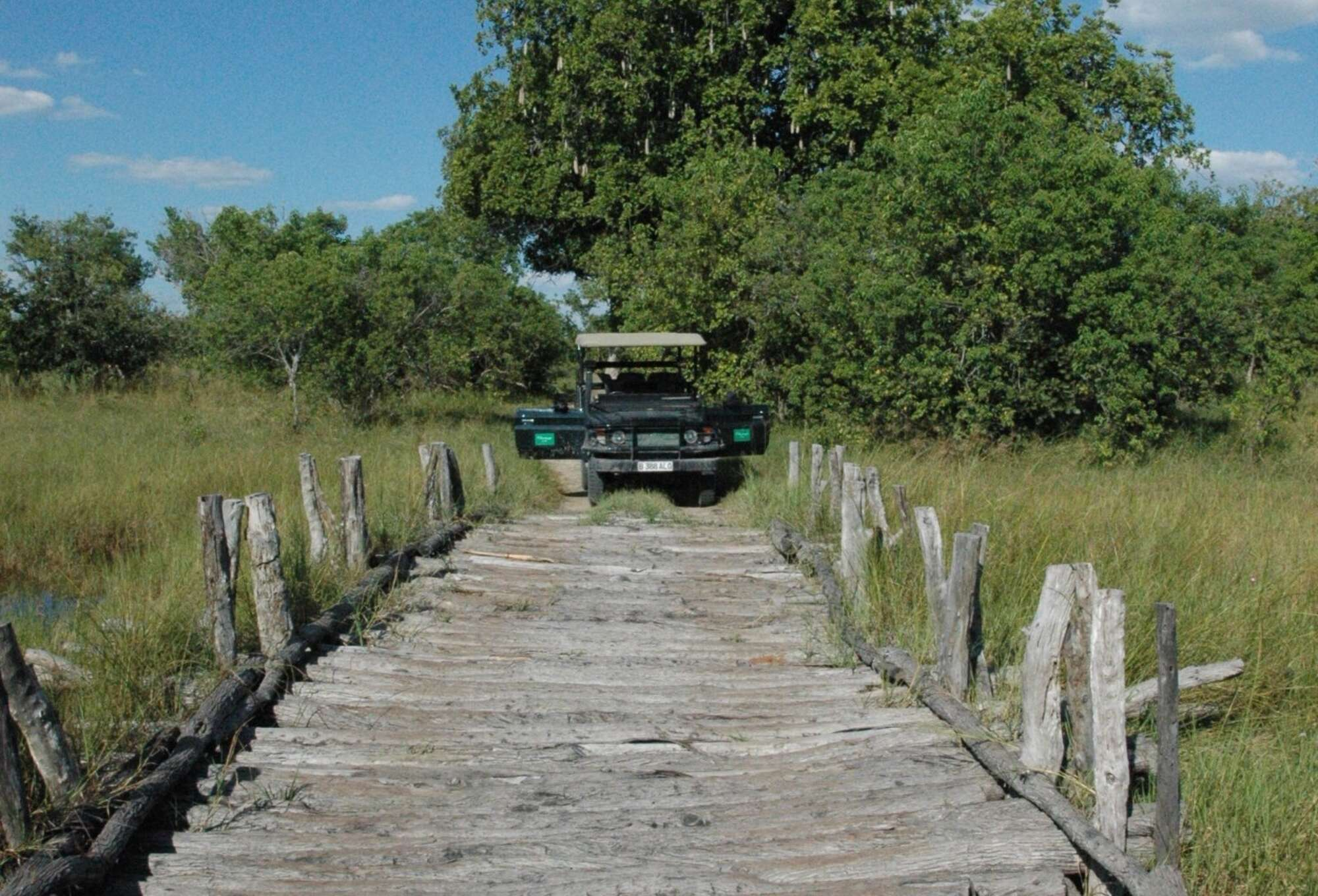 Botswana private mobile safari in the Moremi Game Reserve.