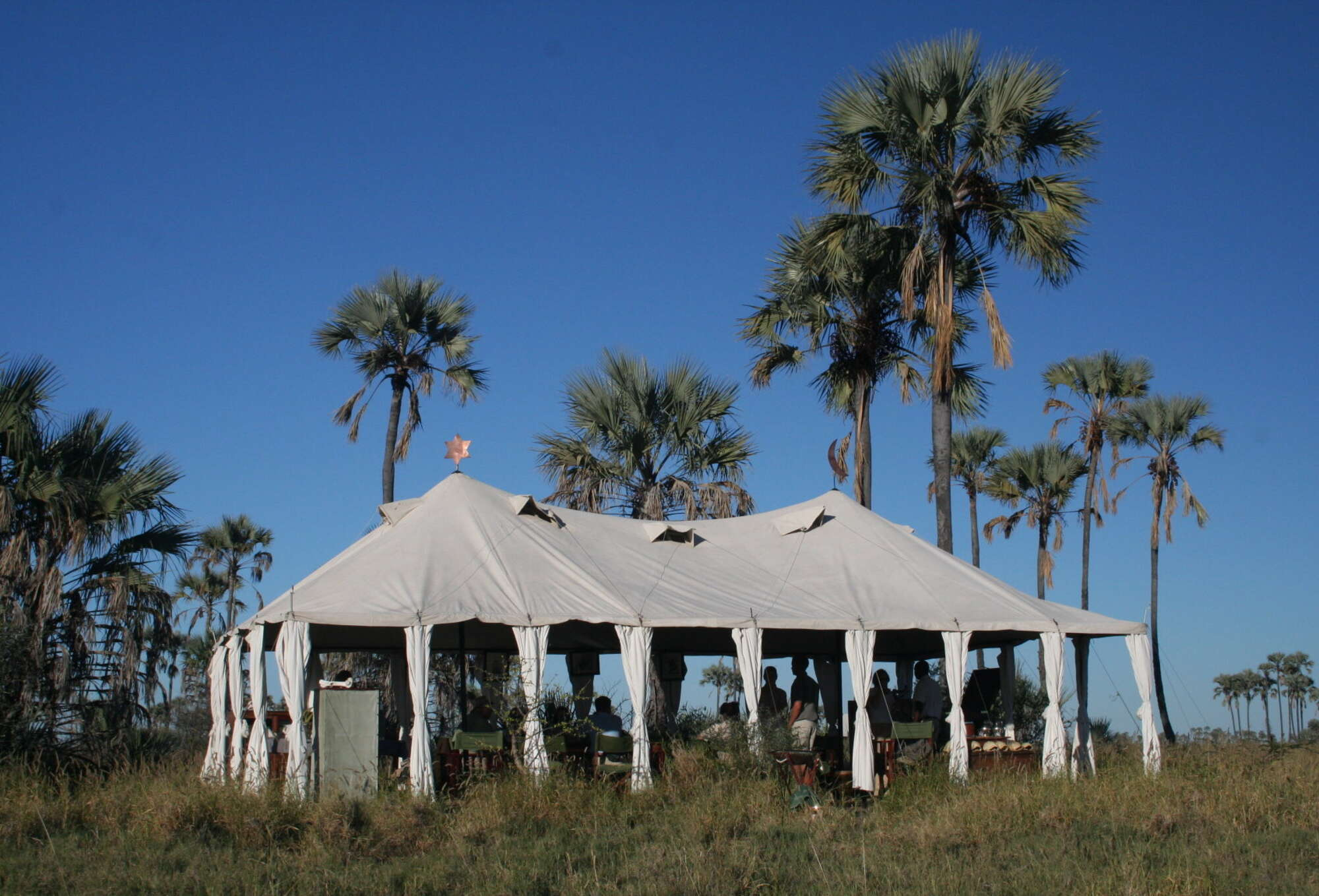 Botswana safari staying at San Camp on the eastern side of the Makgadikgadi Pans National Park.