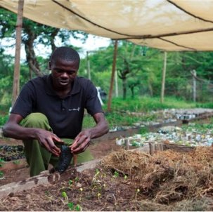 Growing Kenya's future one seed at a time