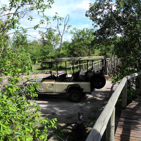 Activities at Savuti include day and night 4WD game drives...