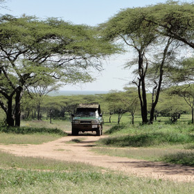 It's in the north of the Serengeti from July to mid November...