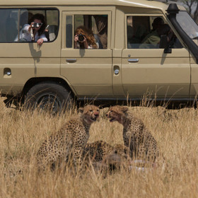 The Serengeti is known for its fantastic wildlife viewing ...