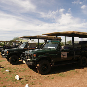Game drives are done in open safari vehicles and led by very knowledgeable guides.