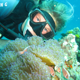 Scuba diving and PADI courses can be arranged by the Villa's manager at extra cost.