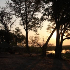... or go on day or night game drives and guided walks that are offered here.