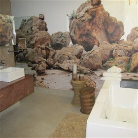 Striking photographic murals adorn the bathroom walls, as shown here in the Erongo Premier Suite...