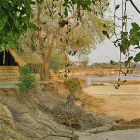 ... overlooking the Luangwa River.