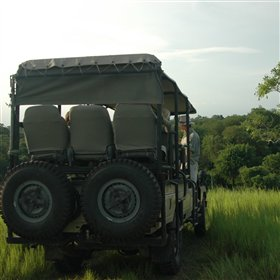 On 4WD safaris you drive in shaded open-topped vehicles in search of the game.
