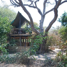 The three chalets at Chikoko are built under shady trees.