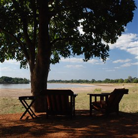 Comfortable chairs are located under shady trees with views of the Luangwa River beyond.