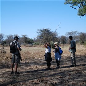 ... and guided walking safaris accompanied by an armed scout.