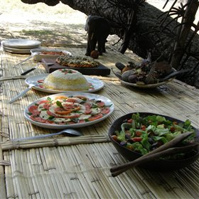 Tasty buffet lunches are served between activities...