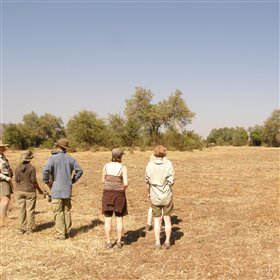 Walking safaris take centre-stage - often combined with a short drive.