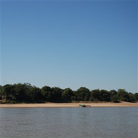 Luangwa River Camp lies shaded by a forest on the banks of the Luangwa River.