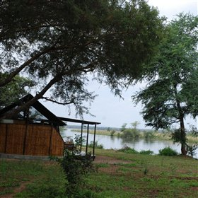 ... and stands on the banks of a channel or verdant tributary of the Zambezi River.