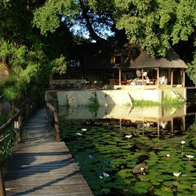 Nxamaseri Lodge is a delightful island getaway in a shallow water Okavango Delta environment.
