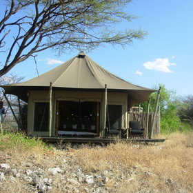 The camp has seven tented rooms...