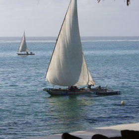 In the mornings, dhows often sail right past the lodge, on their way north for the day.