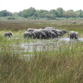 ...with views over Piajio Floodplain where wildlife is often seen.