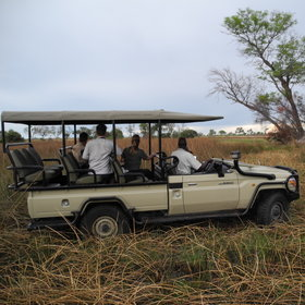 Guided activities focus on game drives...