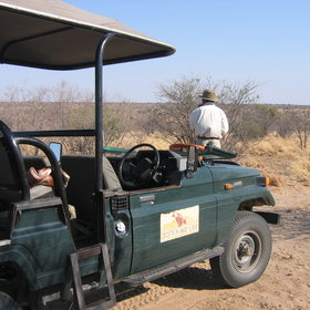 ...or head out on a game drive during the day...