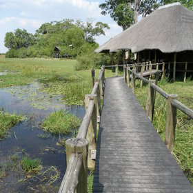 Lebala is a remote and tranquil camp in the very North of Botswana.