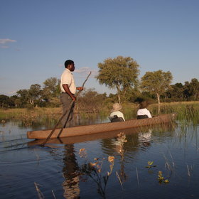 Enjoy a boat trip through the floodplains...