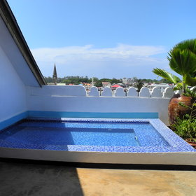 In addition, the terrace features a plunge pool...