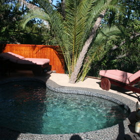 To escape the afternoon heat, enjoy an invigorating dip in your plunge pool.