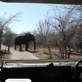 ...and 4WD safaris,...