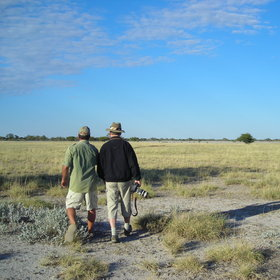 Guided walks are also offered...
