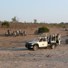 ...into the Chobe National Park...