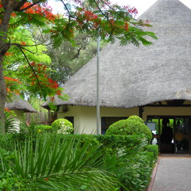 The Riley's Hotel is a useful place for a overnight stay in Maun.