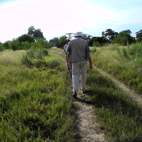 Activities at Khwai Tented Camp focus on walking...