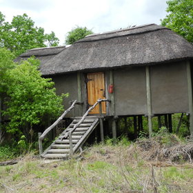 The rooms are large thatched chalets raised on stilts...