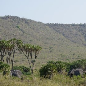The lodge is located in a remote corner of the park where the river flows around the Yatta Plateaui.